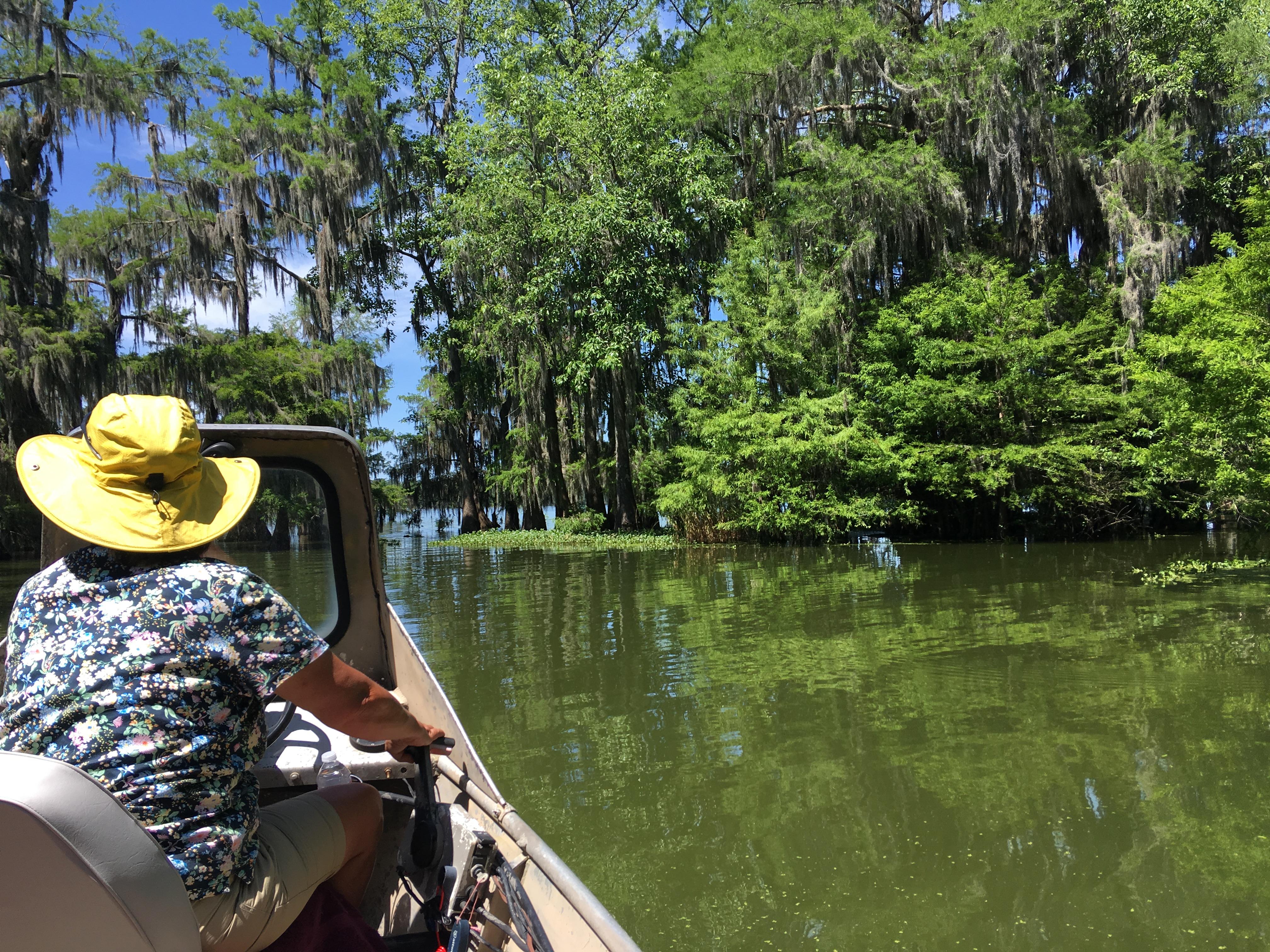ジャズだけとは言わせない!ルイジアナ州のSwampツアー