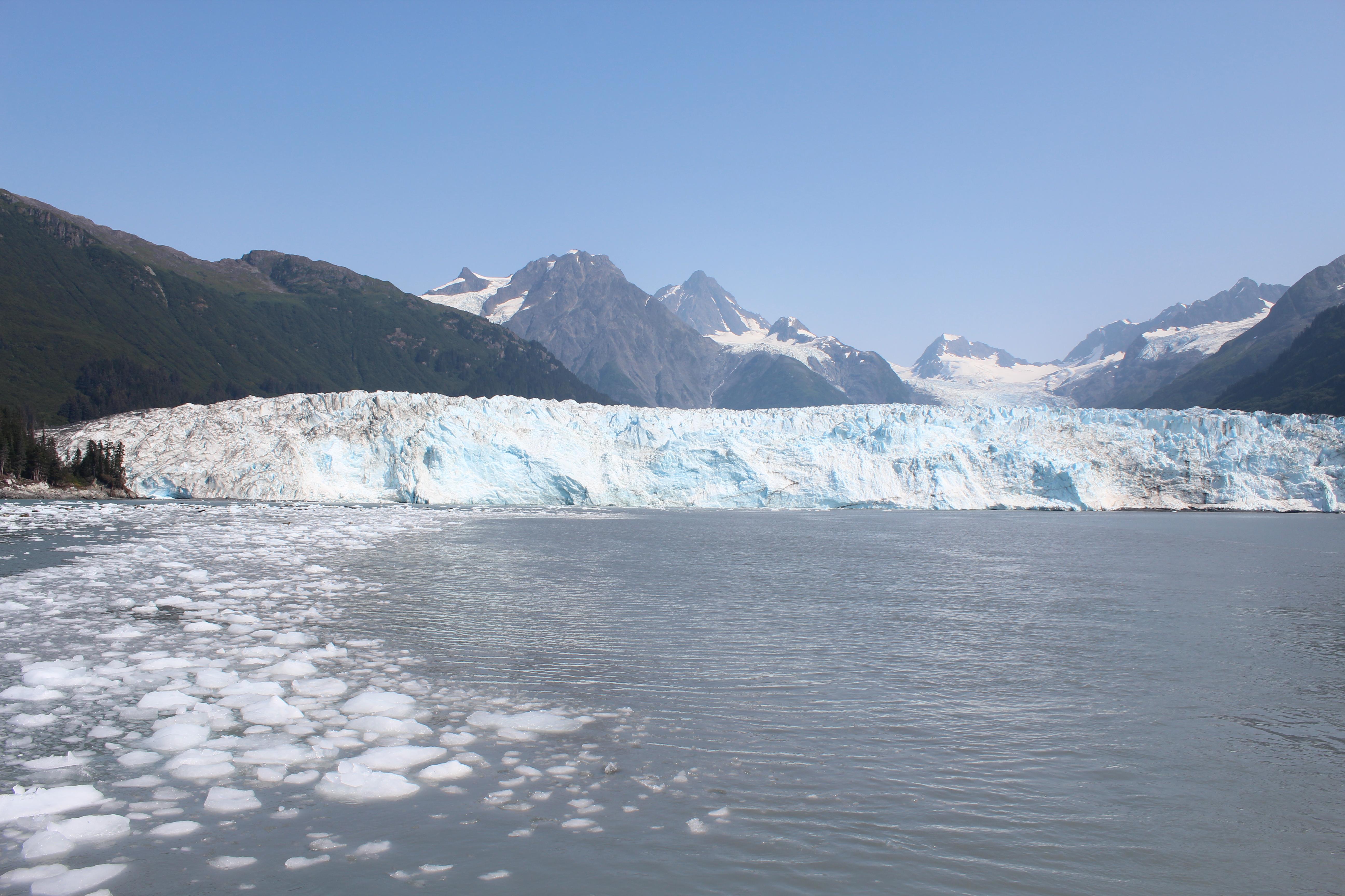 アラスカの氷河クルーズツアー(バルディーズ)
