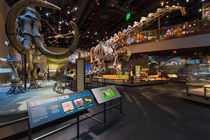 ペロー自然科学博物館