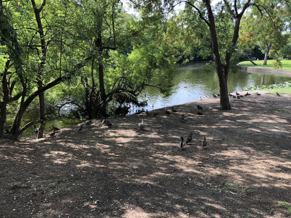 Lakeside Park (Highland Park)